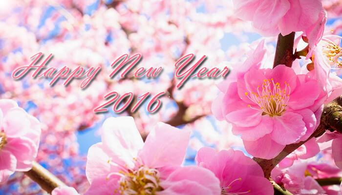 he-lo-5-mon-qua-tang-tet-y-nghia-cho-nam-binh-than-2016 a