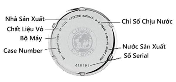Cách Đọc Nắp Lưng Và Kiểm Tra Seri Đồng Hồ Citizen Loại 1