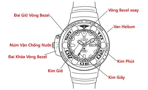 Siêu Đồng Hồ Citizen Promaster Autozilla Chinh Phục Độ Sâu 1000m Cấu Tạo