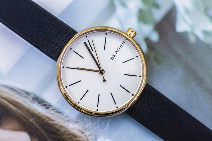 Đồng hồ Skagen SKW2592 giá rẻ, miễn phí thay pin trọn đời - Ảnh 3