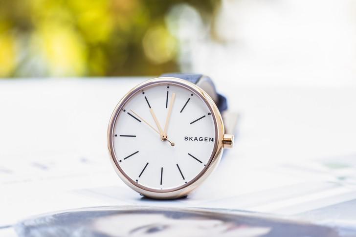 Đồng hồ Skagen SKW2592 giá rẻ, miễn phí thay pin trọn đời - Ảnh 6