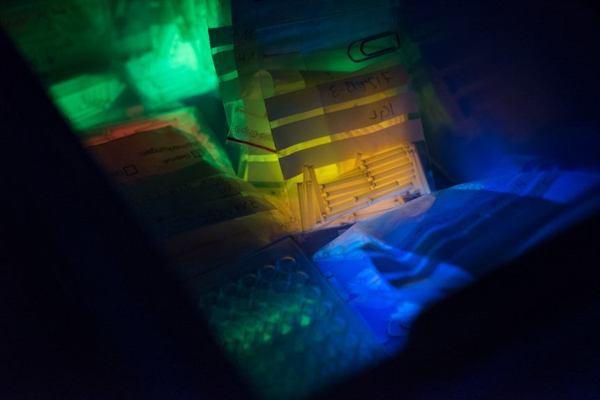 Ống Tritium Phát Sáng Trên Đồng Hồ Đeo Tay Dạ Quang Được MB-MICROTEC Sản Xuất Như Thế Nào Màu