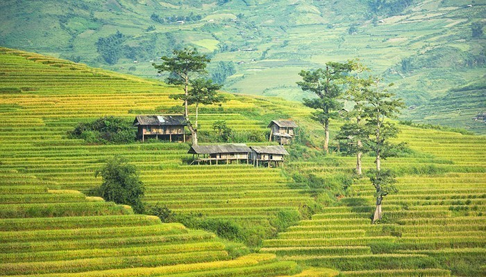 Một chuyến du lịch dành riêng cho vợ chồng chính là dịp để hâm nóng tình cảm