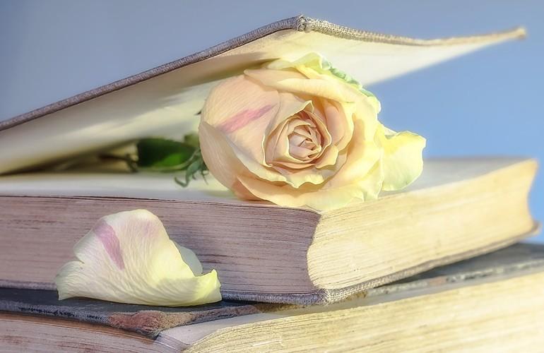 40 Món quà tặng tri ân thầy cô, cực kỳ ý nghĩa ngày 20-11 - sách