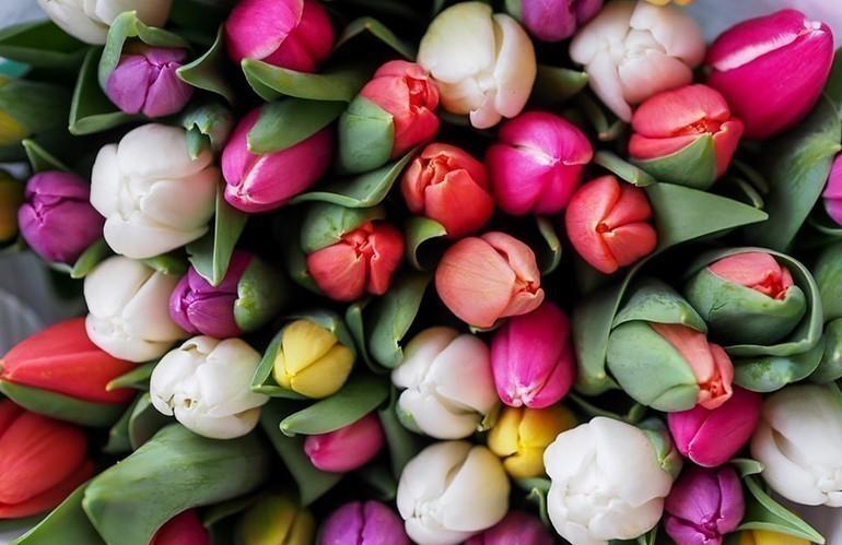40 Món quà tặng tri ân thầy cô, cực kỳ ý nghĩa ngày 20-11 - hoa tươi