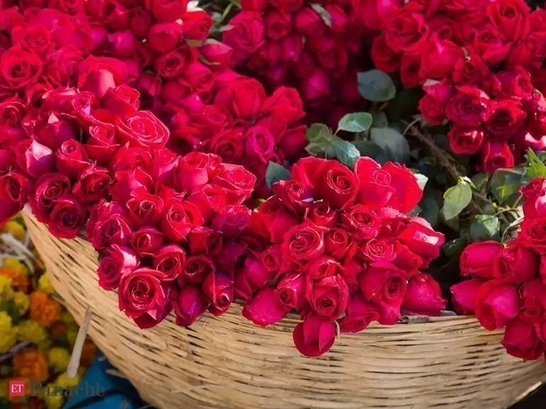 Ngày của Mẹ là ngày mấy? Ý nghĩa ngày của Mẹ ở Việt Nam - Ảnh: 16