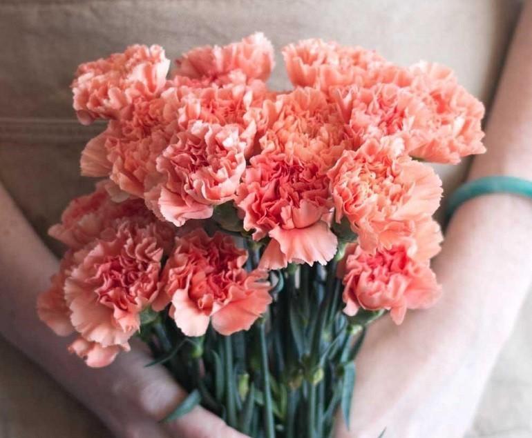 Ngày của Mẹ là ngày nào? Ý nghĩa ngày của Mẹ ở Việt Nam - Ảnh: 9