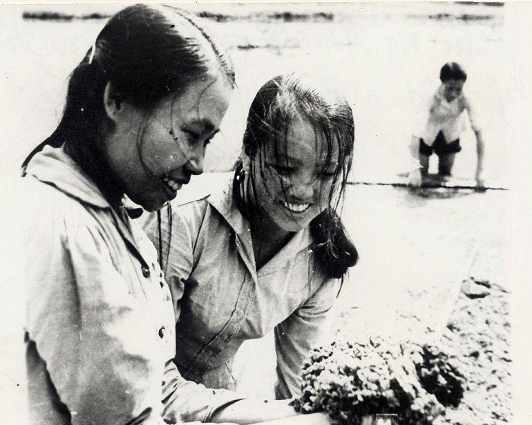 20/10 là ngày gì? Ngày Quốc tế Phụ nữ hay Phụ nữ Việt Nam? - Ảnh: 3