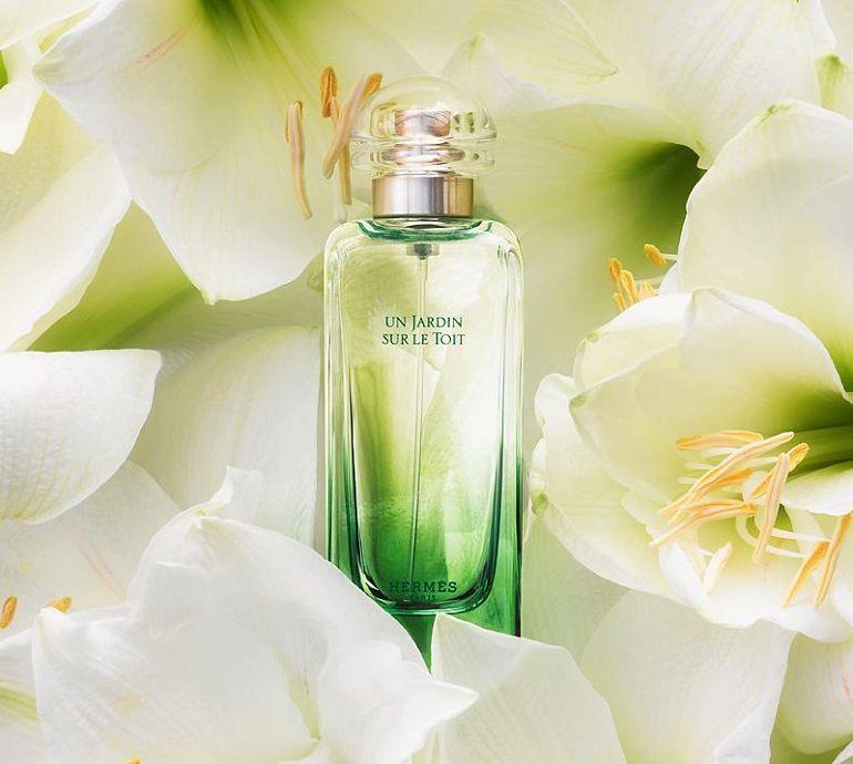 Các loại mùi nước hoa nam hermes quyến rũ nhất - Ảnh: 145