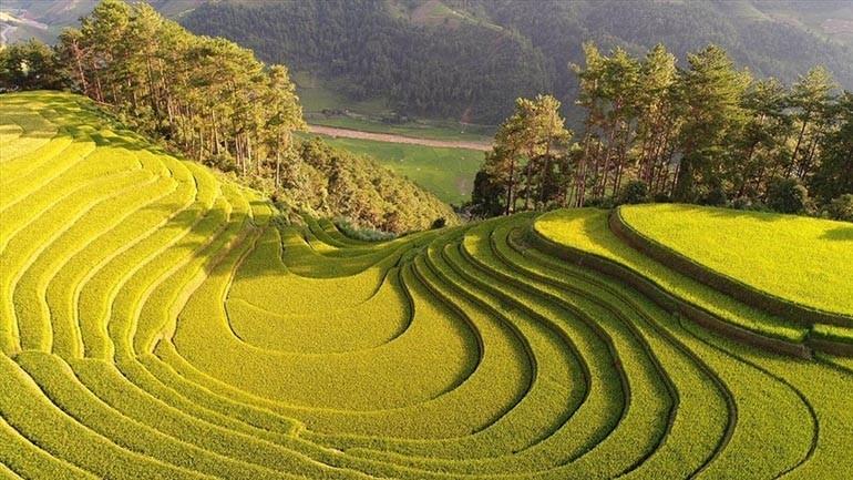 30 cảnh đẹp Việt Nam nổi tiếng phải thử một lần trong đời - Ảnh: 14
